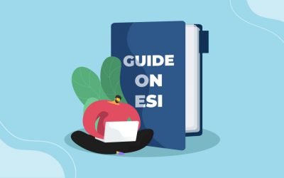 A guide on ESI Calculation and Scheme for employers